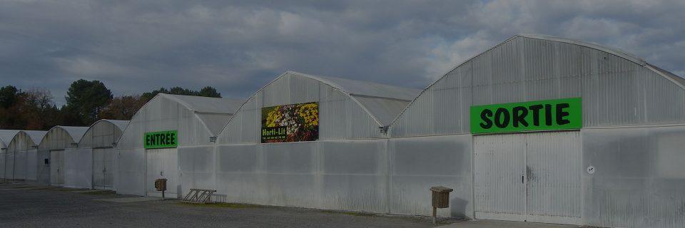 Un choix large et  varié sur 850 m² de plantes